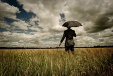 Dlaczego warto się przygotować do zarządzania kryzysem