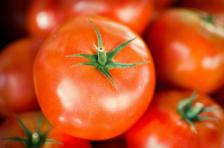 Publiczność rzadko rzuca pomidorami